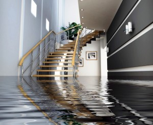 Water Damage St. Louis MO